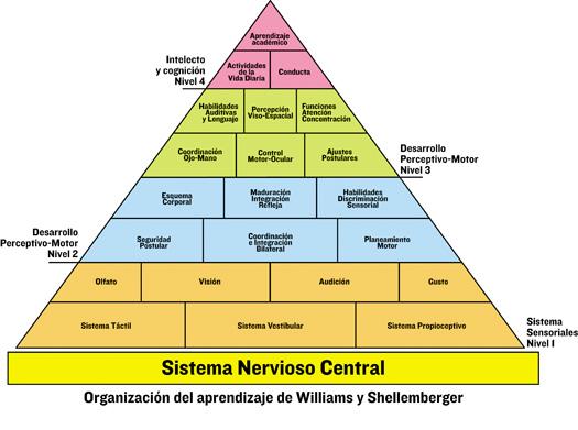 pirámide integración sensorial