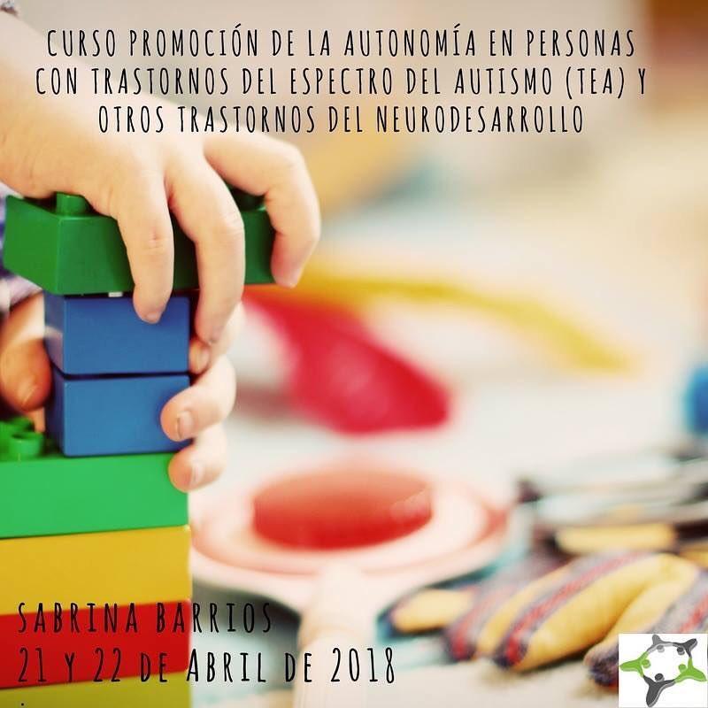 Curso Promoción Autonomía en personas TEA y trastornos del neurodesarrollo @ Sinapse, Tratamiento Integral de la Patología Neurológica y Logopedia | La Coruña | Galicia | España