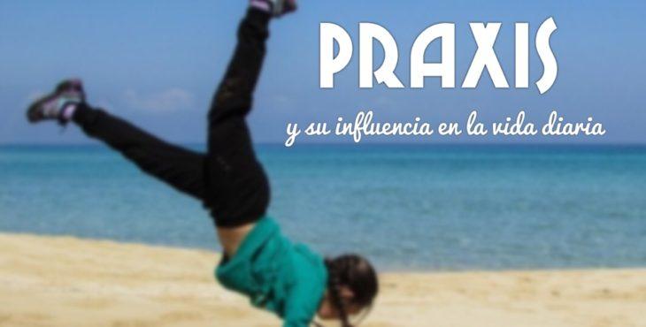 Praxis y su influencia en la vida diaria