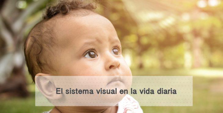 El sistema visual en la vida diaria